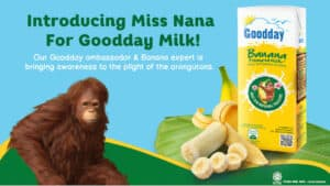 Read more about the article Goodday Milk Embarks on a Mission to create awareness and educate Malaysians towards the preservation of Borneon orangutans