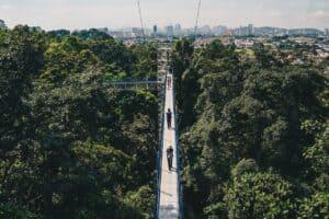 Read more about the article 5 Destinasi Pelancongan Agro Yang Menarik Di Negeri Selangor